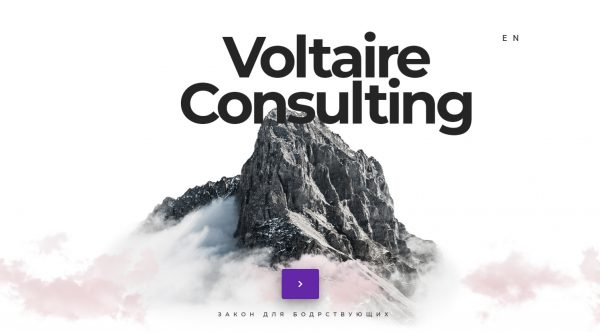 Voltaire Consulting